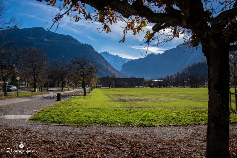 Interlaken006REA_0323